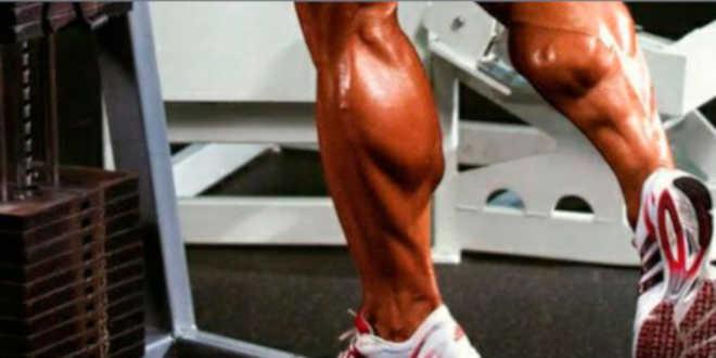 alimentação e musculo